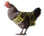 Avian Flu (H7N9) in China