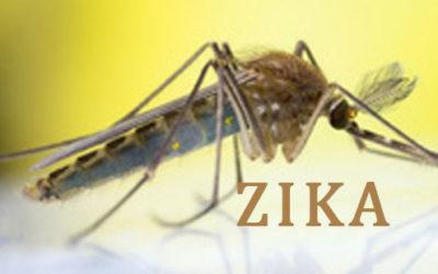 Zika Virus in Palau